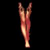 https://www.eldarya.de/assets/img/item/player//icon/2e90f8c37e1e3587f2bd6e545404baf4~1604516141.png