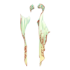 https://www.eldarya.de/assets/img/item/player//icon/5a3032b319cab9918ce2b08c65e22e62~1604520011.png