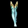 https://www.eldarya.de/assets/img/item/player//icon/8f6ce5ce83fb2634fb9ad4af16b9def9~1604524681.png